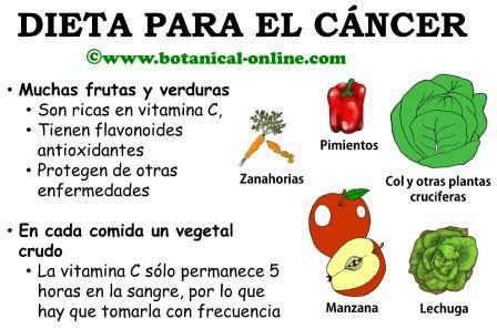 Cancer y dieta - Alimentos contra el cancer de mama ...