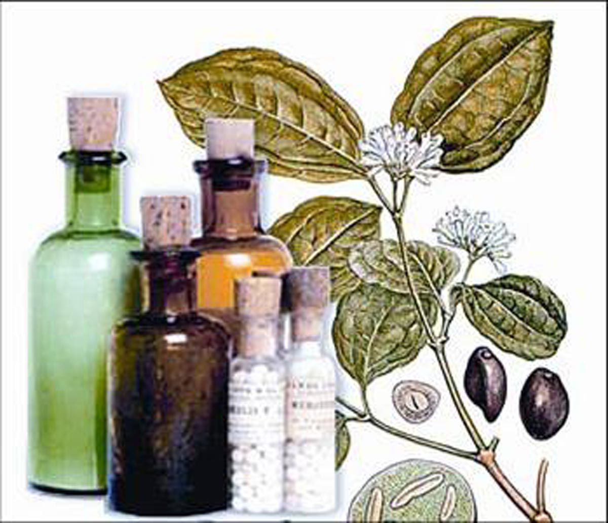 Qu es la Homeopata - Noticias de Salud